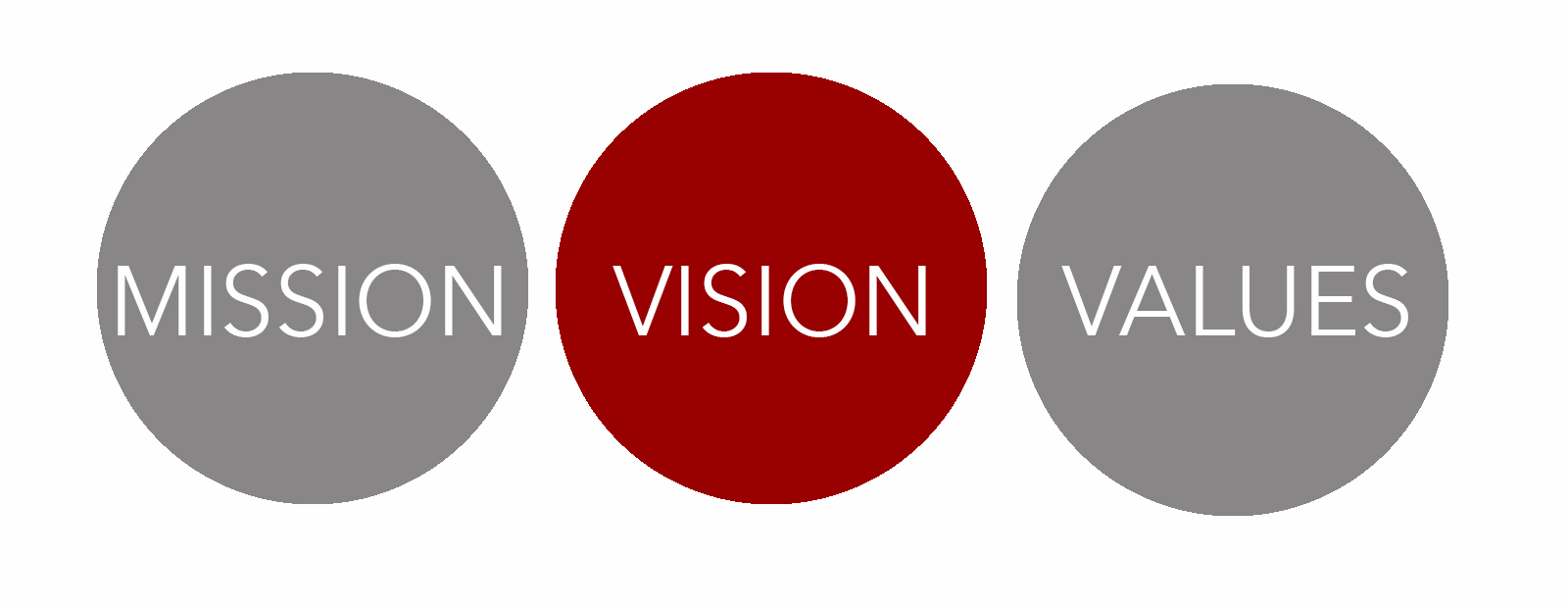 mission and vision ndha